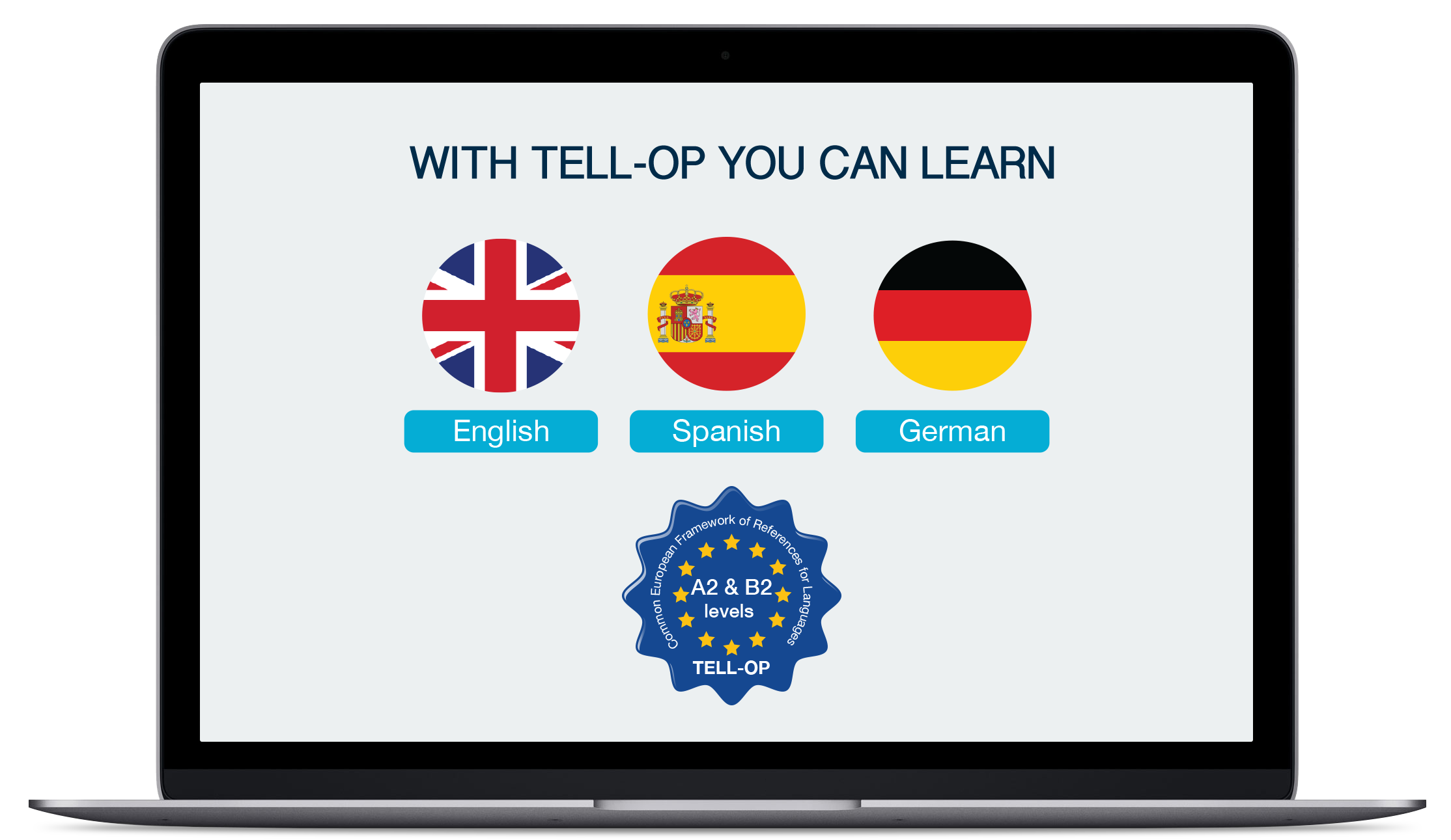learning a new language essay samples